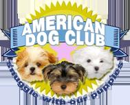 American Dog Club