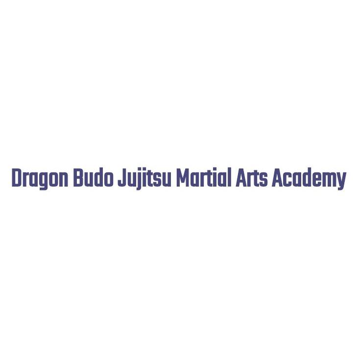 Dragon Budo Jujitsu Martial Art Academy - Chicago, IL 60649 - (708)628-7668 | ShowMeLocal.com
