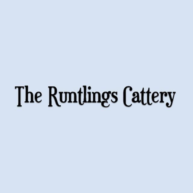The Runtlings Cattery - Ossett, West Yorkshire WF5 8JJ - 01924 275777 | ShowMeLocal.com