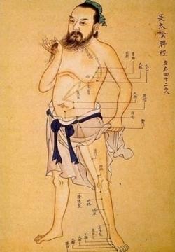 Acupunctuur Regine Sies