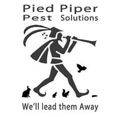 Pied Piper Pest Solutions - Shildon, Durham DL4 1BW - 07709 087868 | ShowMeLocal.com