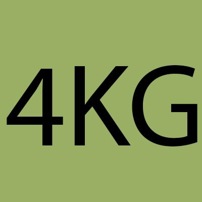 4 Kiwis Gutters LLC