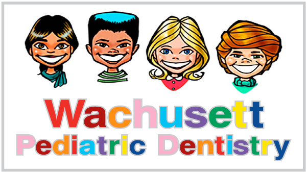 Wachusett Pediatric Dentistry - Thafur Shemmeri DM - Fitchburg, MA