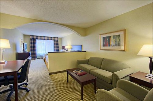 Holiday Inn Express & Suites Dfw-Grapevine image 4