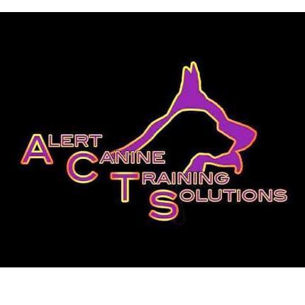 Alert  Canine Training Solutions