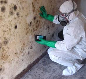 Pro Master Cleaning Restoration