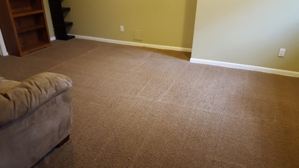 Ct Solutions Littleton Carpet Cleaning Rug Cleaners
