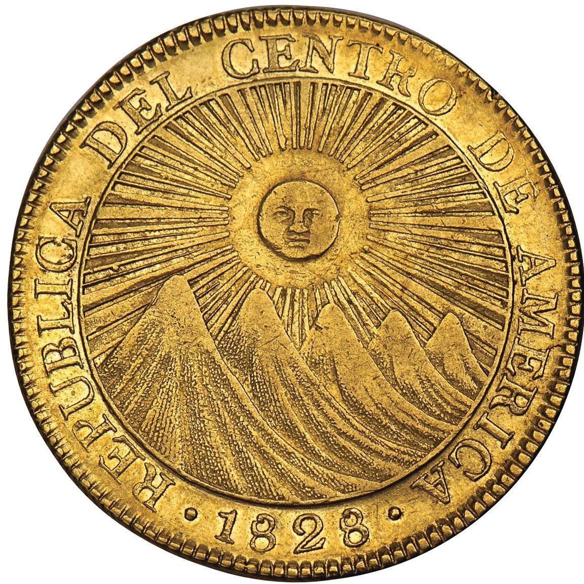 William S Panitch Rare Coins