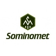 Sominomet