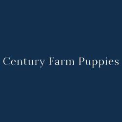 Century Farm Puppies