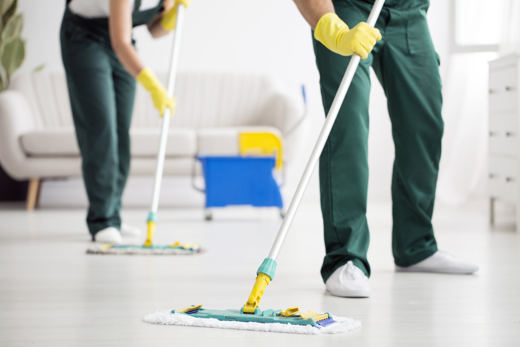 Albert Group Cleaning