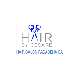 Hair By Cesare, Inc.