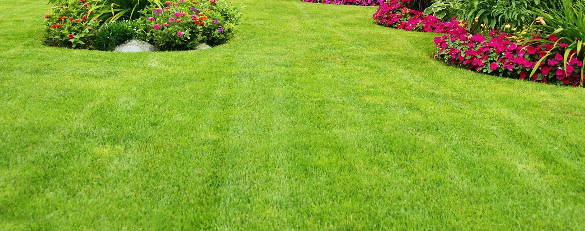 Linex Property Care