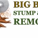 Big Bear Stump & Tree Removal