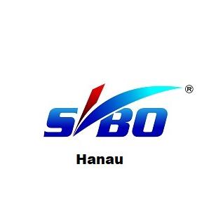 Bild zu SVBO Sachverständige für Wert- und Schadengutachten in Hanau
