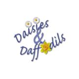 Daisies & Daffodils - Georgetown, TX 78628 - (512)688-1357   ShowMeLocal.com