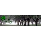 Aim High Tree Service