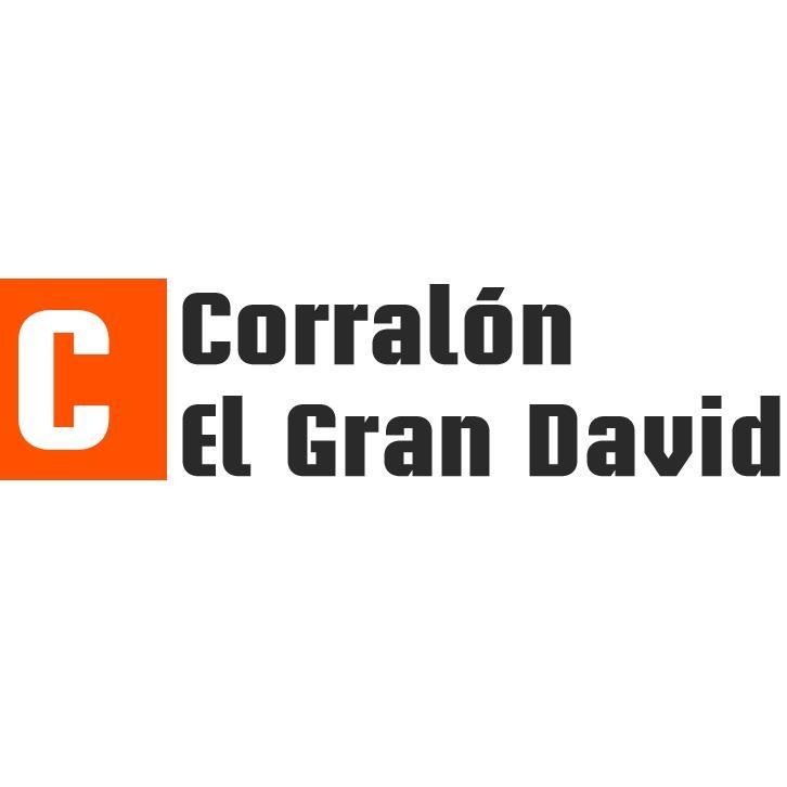 CORRALON EL GRAN DAVID