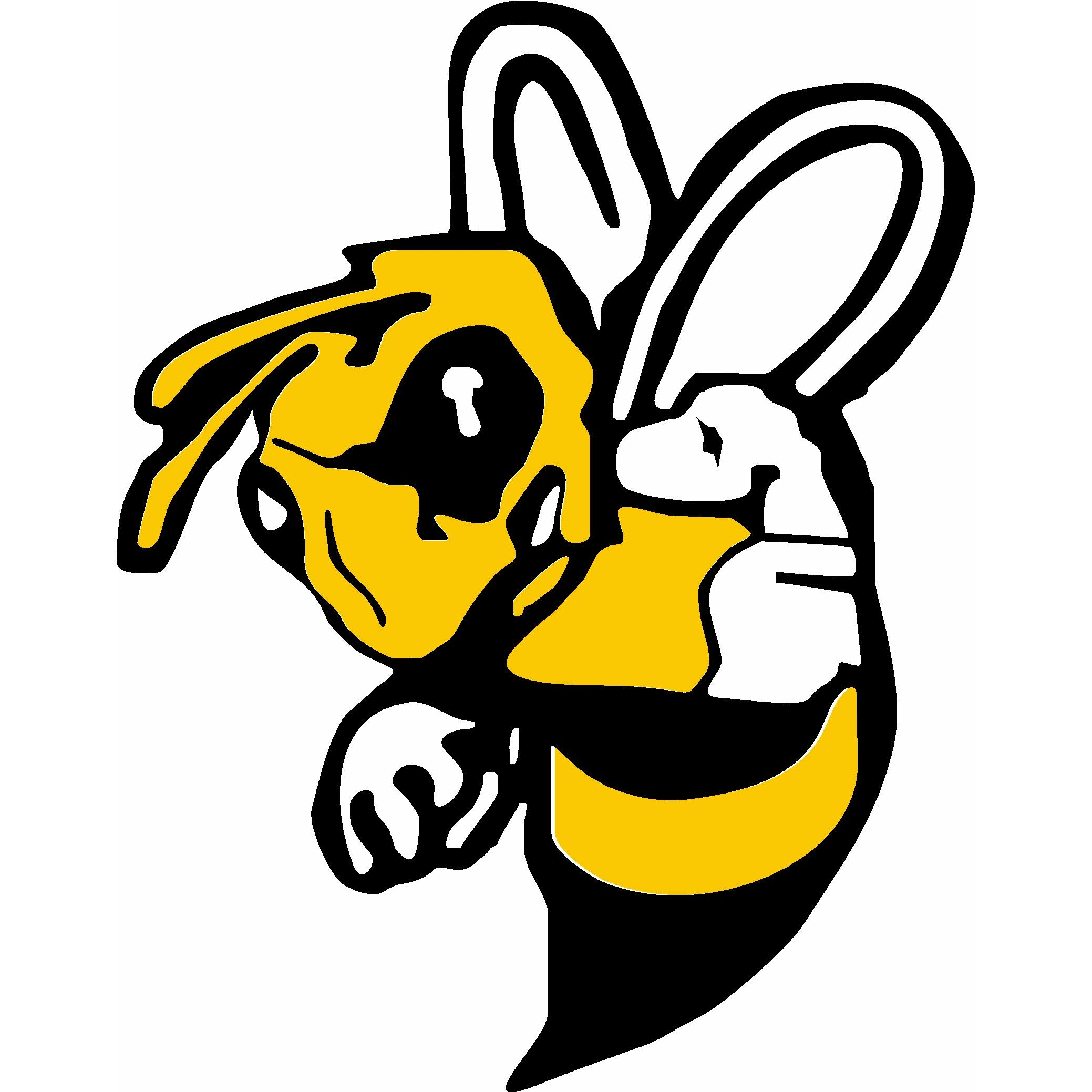 FirstChoice Bee Removal
