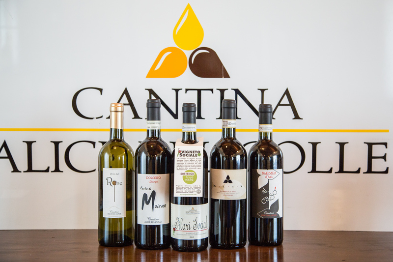 Cantina Alice Bel Colle S.C.A.