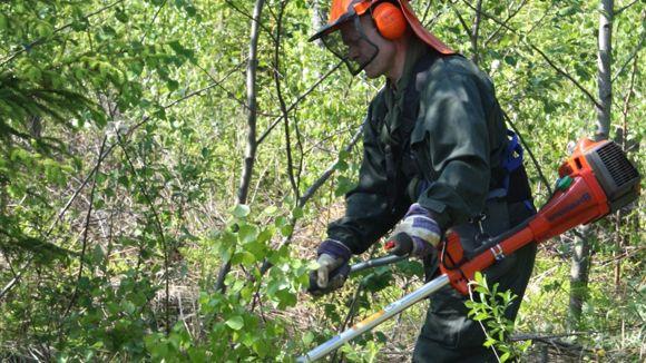 Metsänhoitoyhdistys Pyhä-Kala Merijärven toimisto