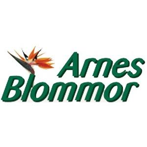 Arnes Blommor