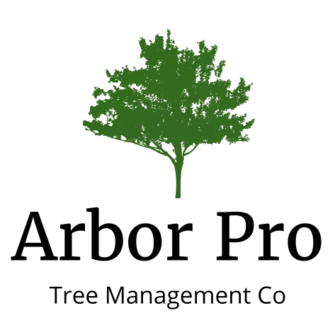 Arbor Pro Tree Management Co LLC