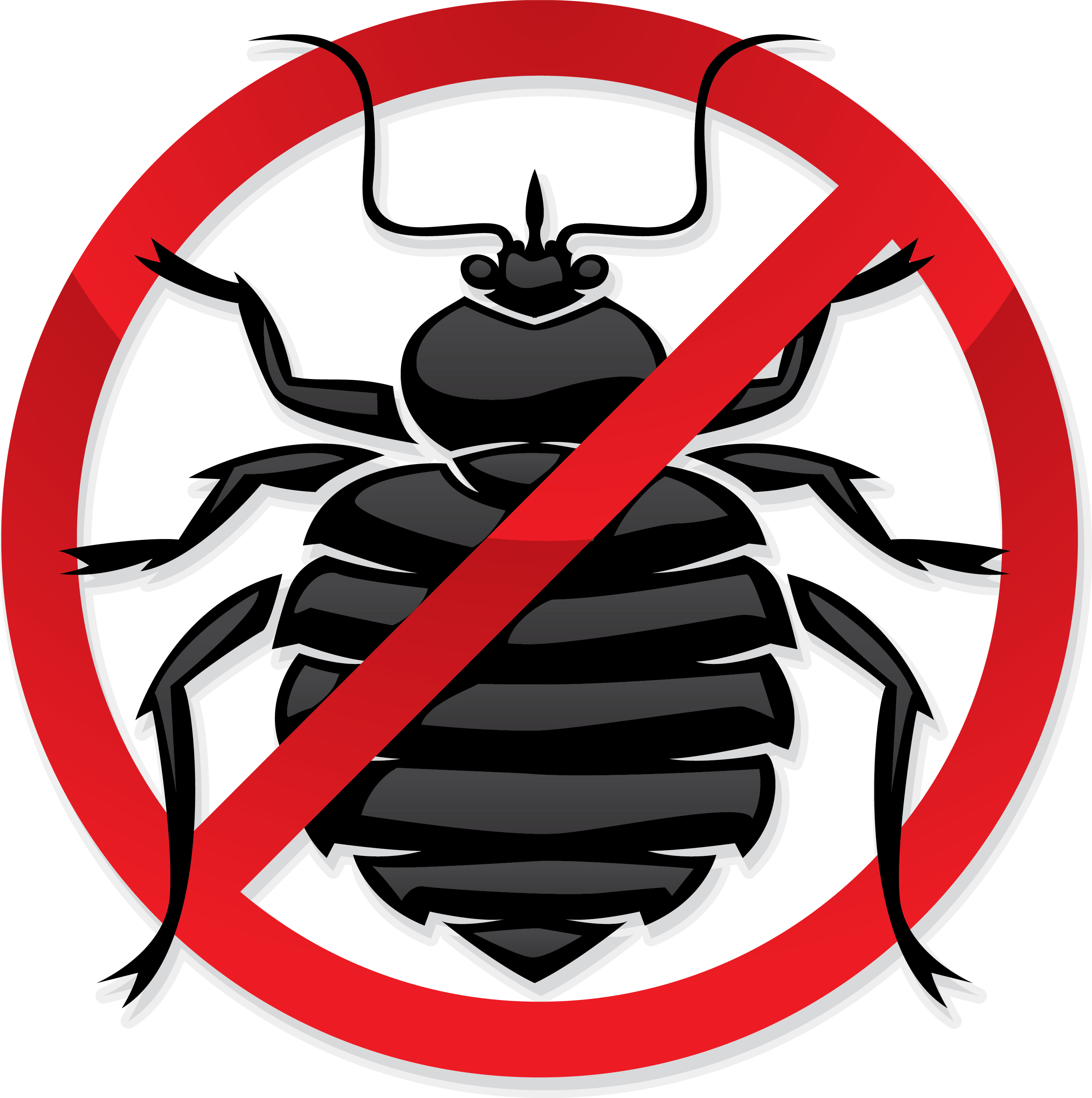 Bed Bug Removal Nyc Cost