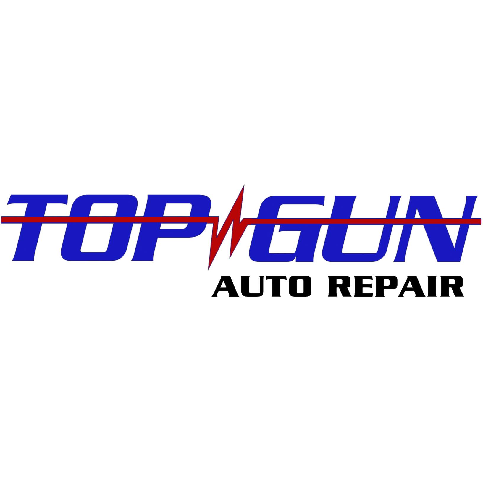 Top Gun - Hazel Crest, IL - Auto Parts