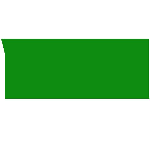 Williston Insurance Agency