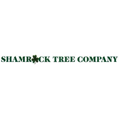 Shamrock Tree Company