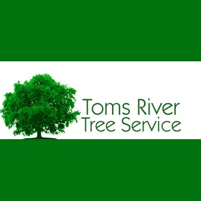 Toms River Tree Service