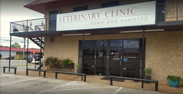 Town Amp Country Veterinary Clinic River Oaks Texas Tx