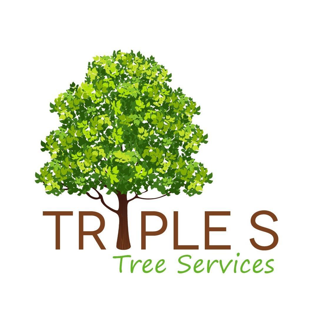 Triple S Trees