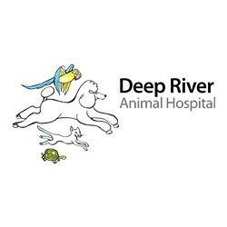 Deep River Animal Hospital - Deep River, CT - Veterinarians