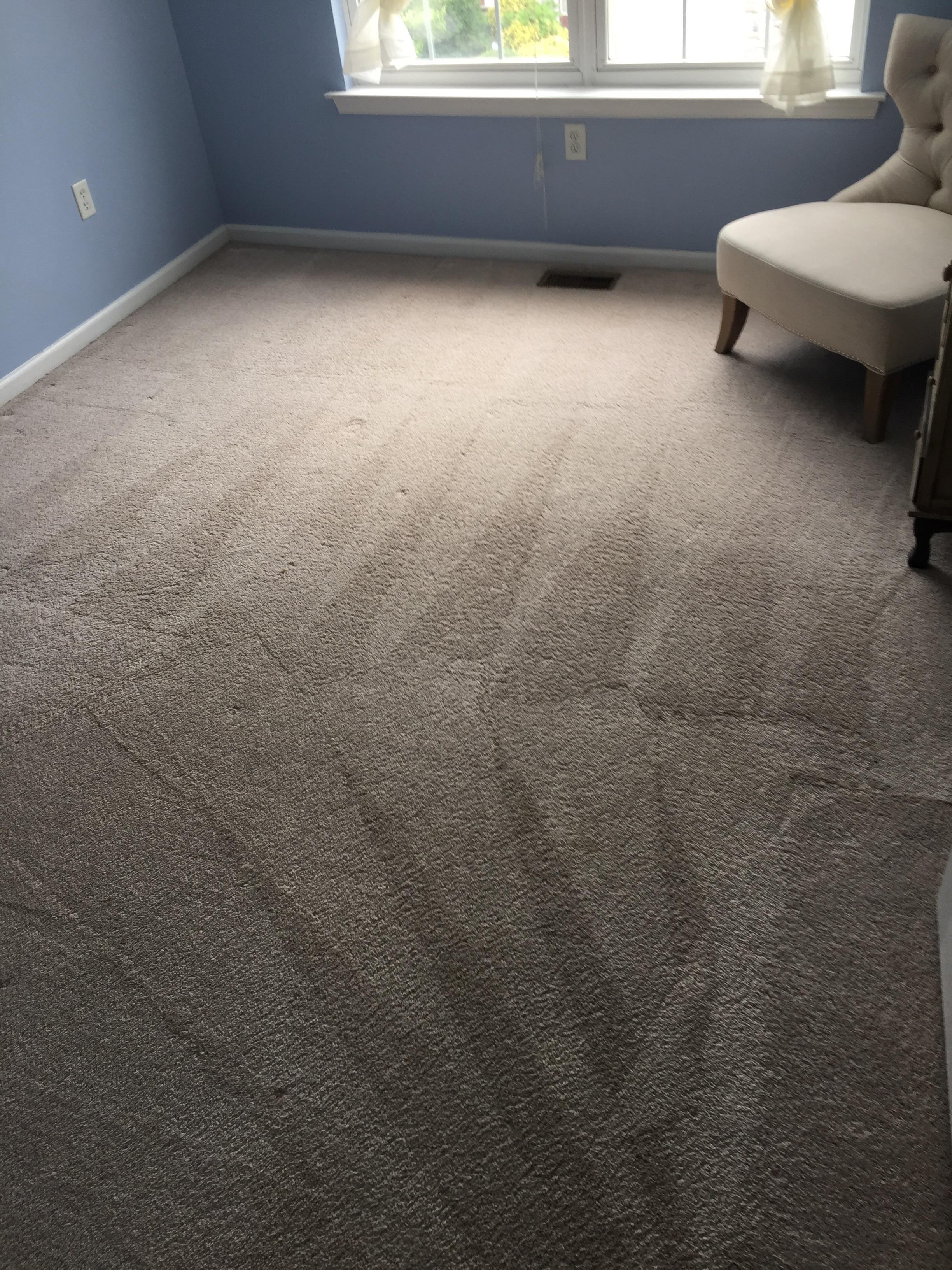 Eco Carpet & Floor Cleaning