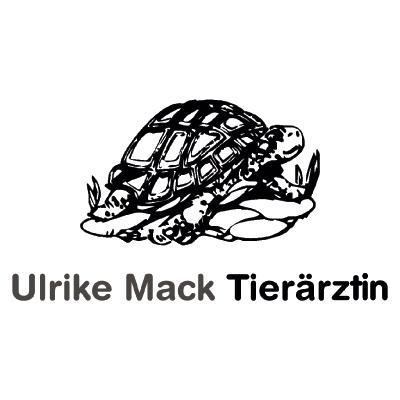 Bild zu Ulrike Mack Tierärztin in Gladbeck