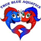 True Blue Aquatics