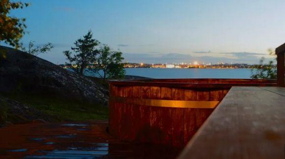 Saunasaari