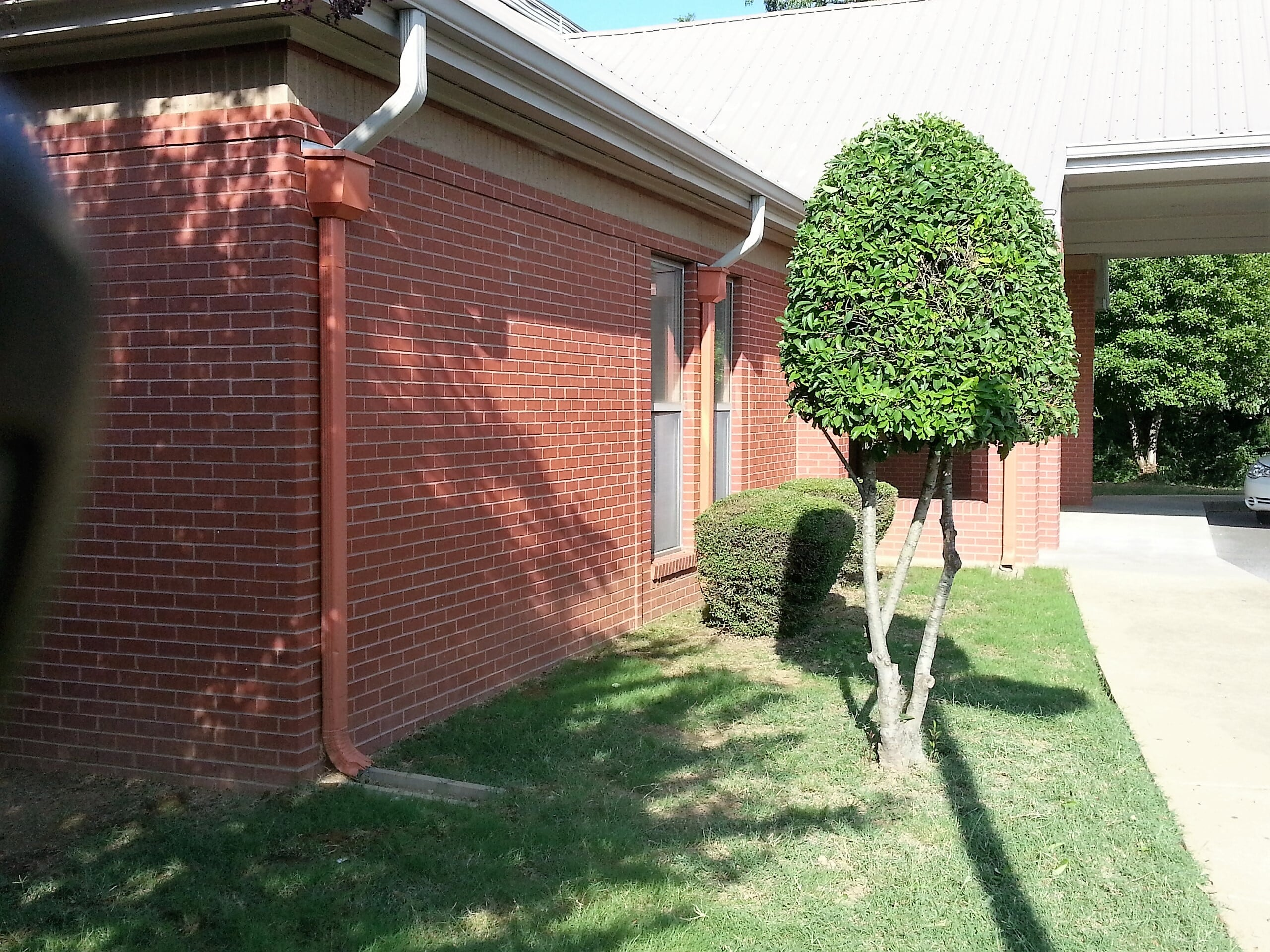 Trinity lawn care of memphis memphis tennessee tn for Garden trees memphis