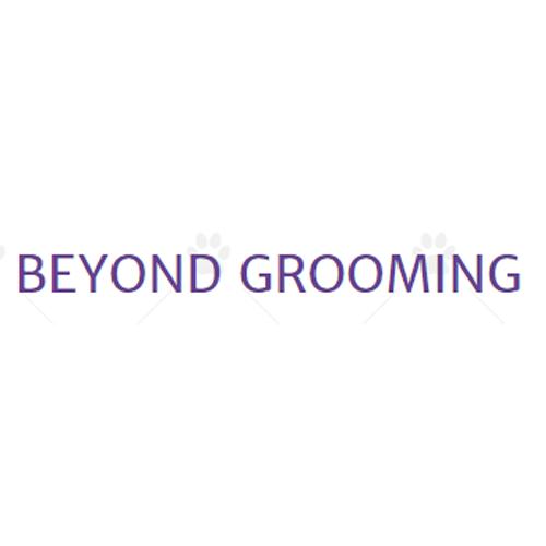 Beyond Grooming LLC