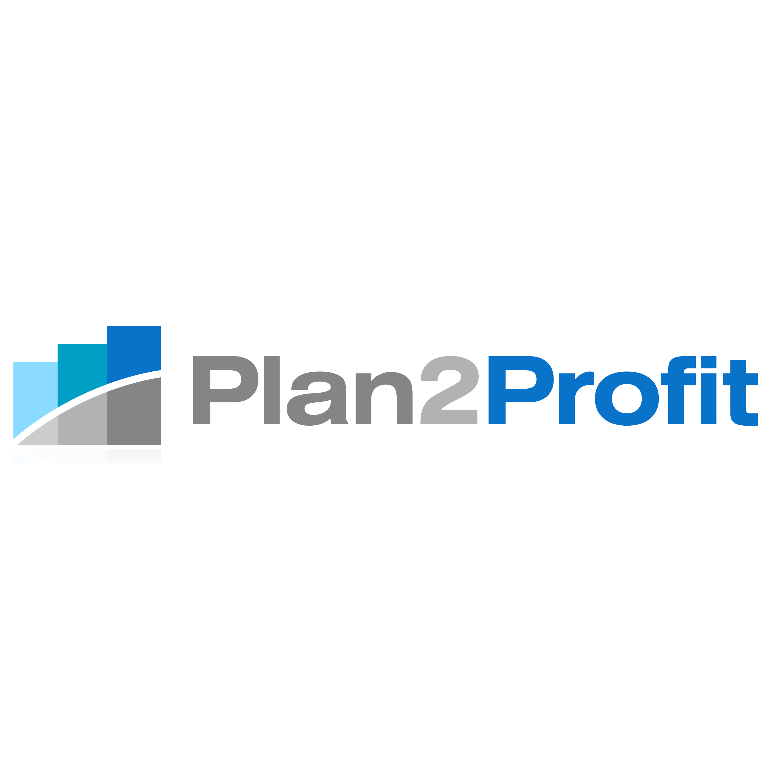 Plan2Profit Marketing
