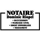 Riopel Dominic