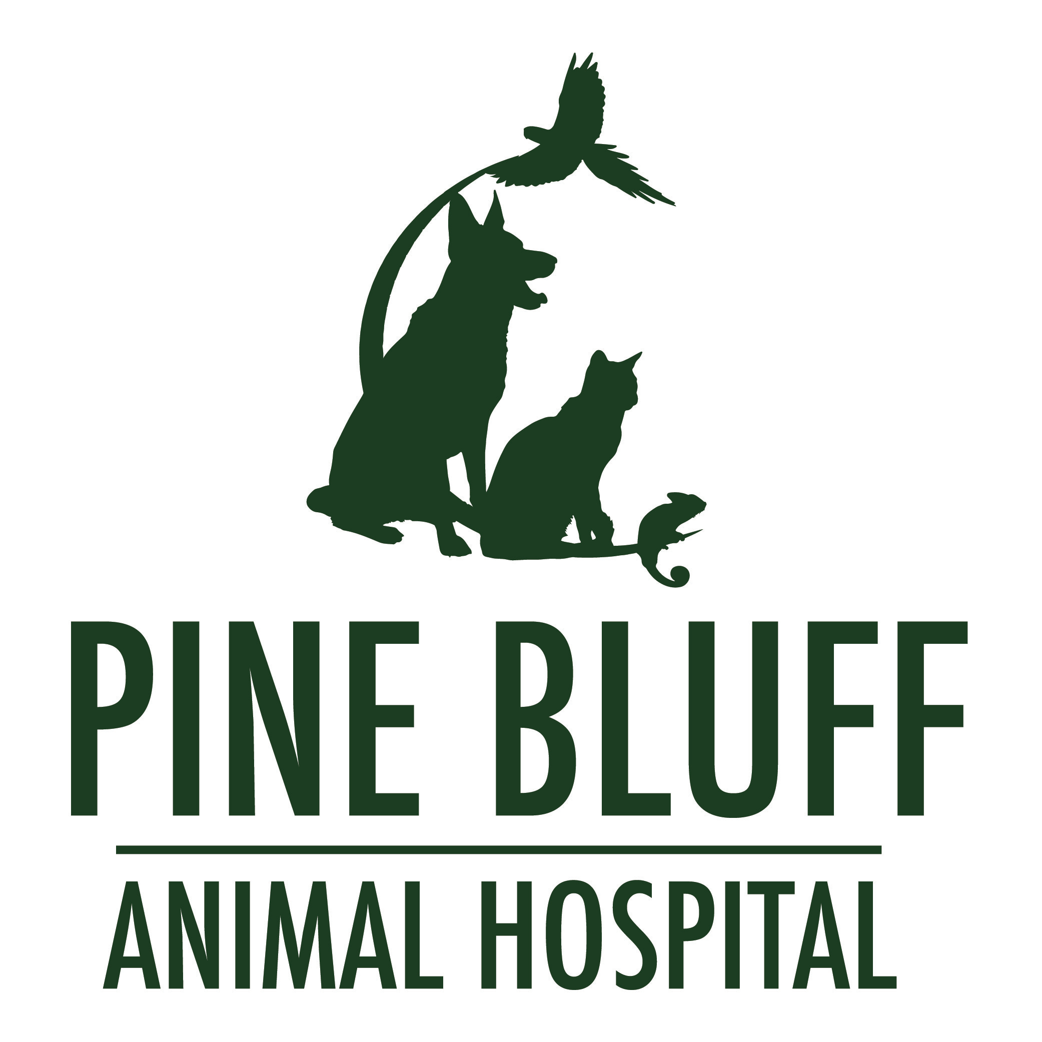 Pine Bluff Animal Hospital - Morris, IL 60450 - (815)942-5365 | ShowMeLocal.com