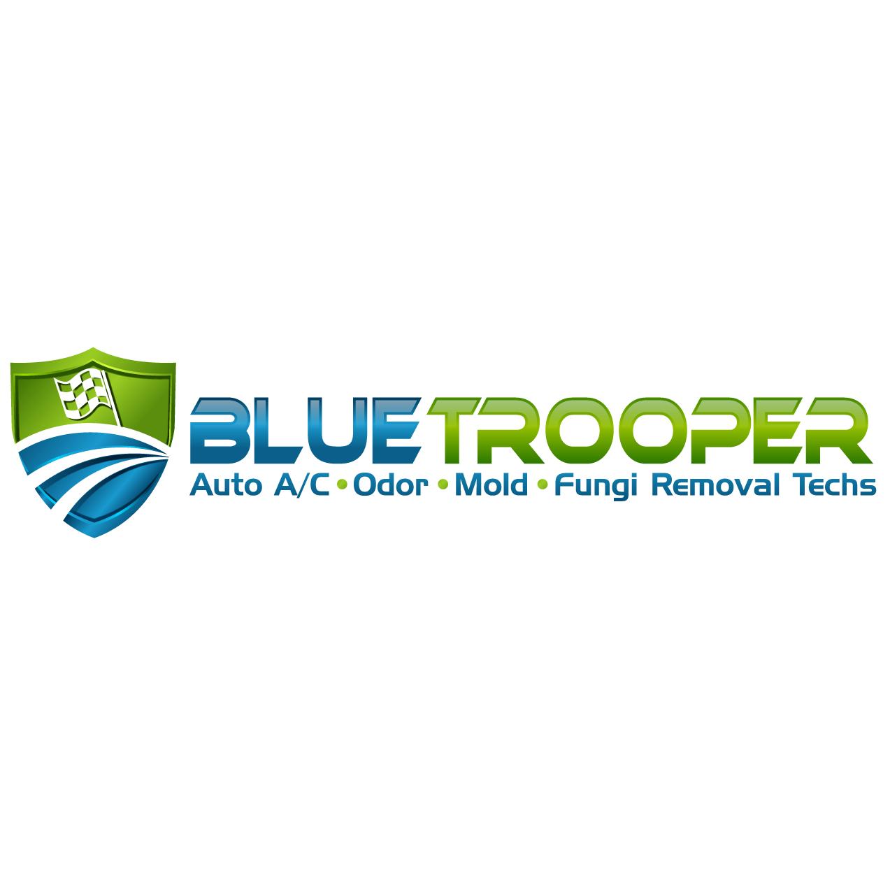 Blue Trooper Automotive HVAC Allergen & Odor Removal Service