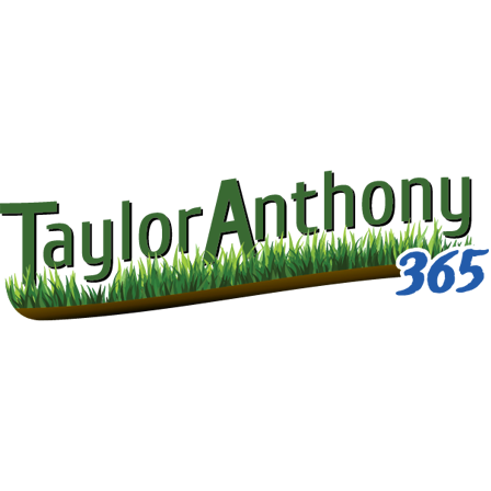 Taylor Anthony 365