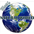 Matt's Natural World