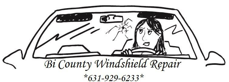 Bi County Windshield Repair image 0