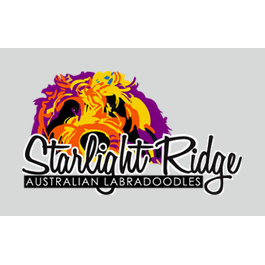 Starlight Ridge Australian Labradoodles - Grants Pass, OR 97526 - (541)471-6070 | ShowMeLocal.com