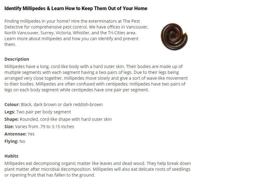 Pest Detective Ltd in North Vancouver: Millipedes & Learn How to Keep Them Out of Your Home